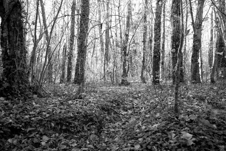 Bajo el Valle de Ambroz se ocultan las morunas (Fotografía: Jimber)