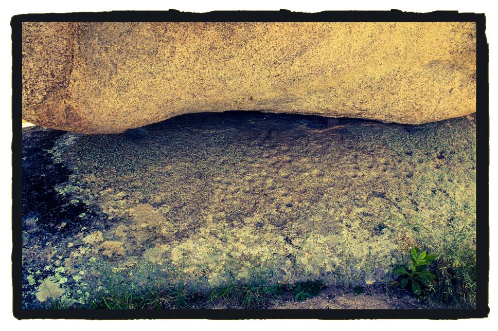 Cazoletas en Los Barruecos (Malpartida de Caceres)