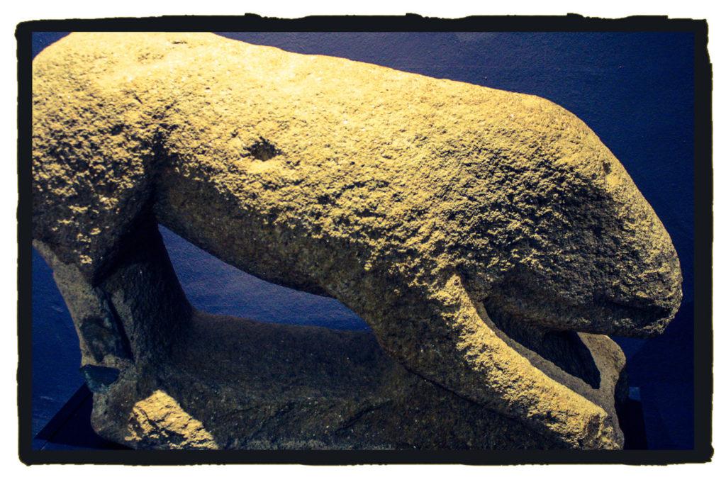 Verraco del castro celta de Villasviejas de Tamuja (A. Briz)