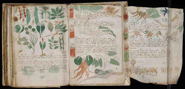 03-seccion-de-herbario