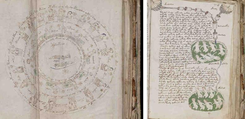 04-secciones-astronomica-y-biologica