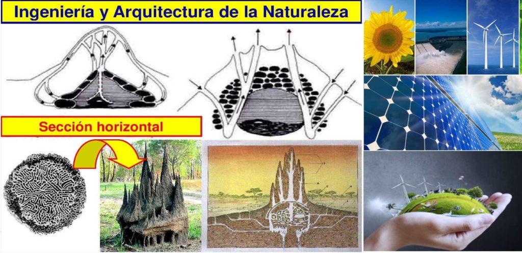 02-arquitectura-ingenieria-y-naturaleza